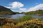 Ireland, County Kerry, near Killarney, Killarney National Park, Muckross Estate, view over Muckross Lake | Irland, County Kerry, bei Killarney, Killarney National Park, Muckross Estate, Blick ueber den Muckross Lake