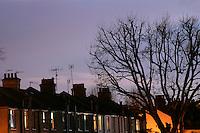 Row of terraced houses at dusk, London, UK