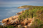 Rocky cliffs along Acadia's shore path, Acadia National Park, ME