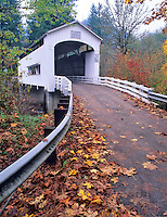 Wild Cat Bridge over the Siuslaw River with fall colors. Oregon.