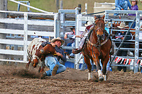 Rodeo_Steer Wrestling