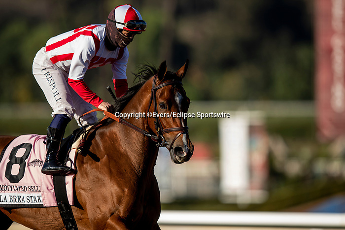 December 26, 2020: Motivated Seller at the  La Brea Stakes at Santa Anita Park in Arcadia, California on December 26, 2020. Evers/Eclipse Sportswire/CSM