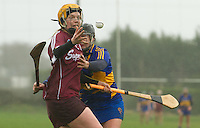 2016 Irish Daily Star Camogie League Division One Tipperary V Galway