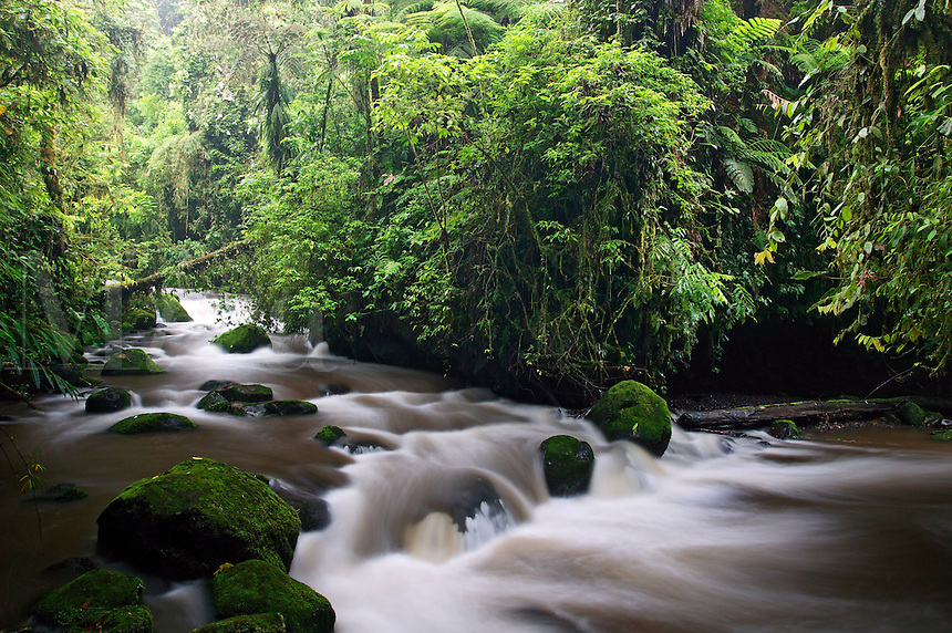 The La Paz River flows along the trail at the La Paz Waterfall Gardens and Peace Lodge, Costa Rica