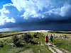 Dramatic Summer Storm Clouds over the South Downs near Lancing Clump in West sussex.<br /> <br /> The South Downs is a range of chalk hills that extends for about 260 square miles (670 km2) across the south-eastern coastal counties of England from the Itchen Valley of Hampshire in the west to Beachy Head, near Eastbourne, East Sussex, in the east. It is bounded on its northern side by a steep escarpment, from whose crest there are extensive views northwards across the Weald. The South Downs National Park forms a much larger area than the chalk range of the South Downs and includes large parts of the Weald.<br /> <br /> Stock Photo by Paddy Bergin