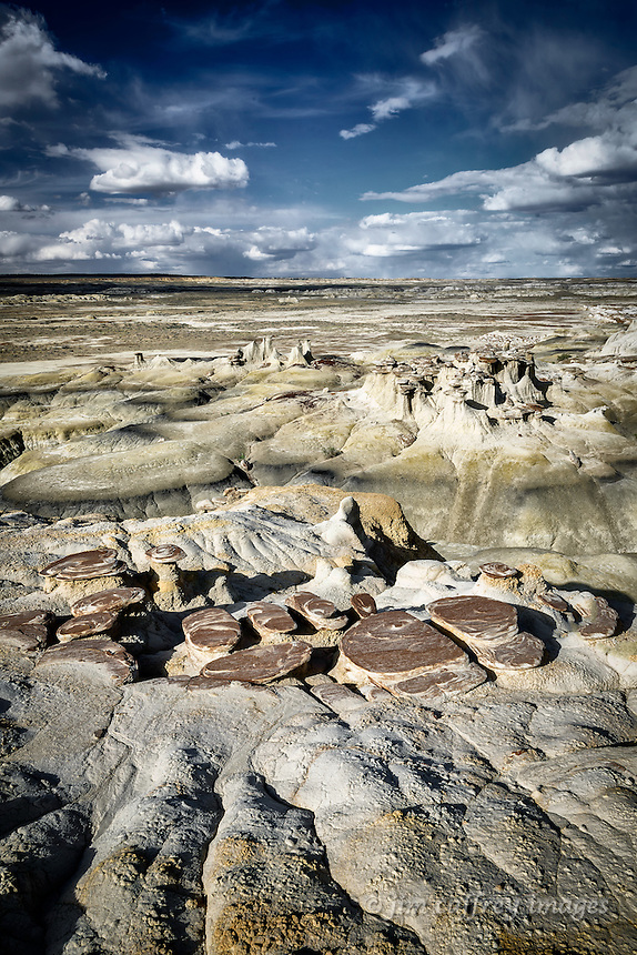 A view across the eroded south rim of Ah Shi Sle Pah Wash in New Mexico's San Juan Basin, showing the effects of millions of years of wind and rain.