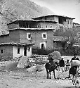 Iraq 1963 .Houses in the village of Roste.Irak 1963.Maisons du village de Roste