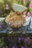 France, Aquitaine, Landes (40) , Pissos, Pastis landais    //  France, Aquitaine, Landes, Pissos:  Pastis Landais, a kin of local brioche