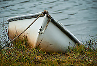 Rowboat, Cape Cod, MA, Massachusetts, , USA