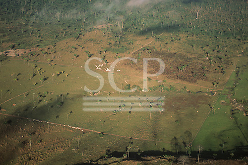 Mato Grosso State, Brazil. Aerial view of a small farm settlement with cattle grazing.
