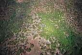 Nord calédonien, forêt sèche