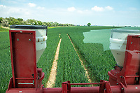 View from cab spraying wheat - Lincolnshire, June
