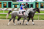 January 16, 2016: Stageplay with Florent Groux up in the Silverbulletday Stakes race in New Orleans Louisiana. Steve Dalmado/ESW/CSM