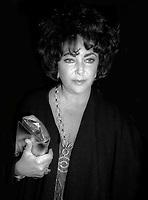 Elizabeth Taylor Undated<br /> Photo By Adam Scull/PHOTOlink.net