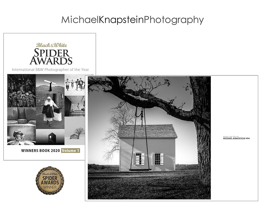 """Michael Knapstein's photograph """"Hague Log Church"""" was published in the Spider Awards Winners Book for 2020."""