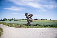 Roadside Natural Art<br /> cycling hotspots & impressions in Heuvelland<br /> <br /> Cycling In Flanders <br /> Flanders Tourist Board<br /> <br /> ©kramon