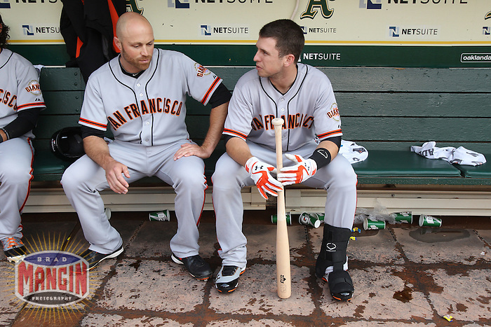 OAKLAND, CA - JUNE 22:  Nate Schierholtz #12 and Buster Posey #28 of the San Francisco Giants get ready in the dugout before the game against the Oakland Athletics at O.co Coliseum on Friday June 22, 2012 in Oakland, California. Photo by Brad Mangin