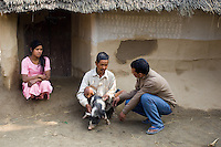 Nepal, Dang. Bimila Chaudhary, ex-Kumlari. A girl in bonded labor, her family was given a piglet for her freedom.