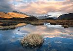 Pond, Alaska