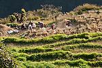 Paro, Bhutan 10/2012