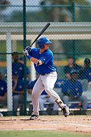 Toronto Blue Jays Hagen Danner (26) at bat during an Instructional League game against the Pittsburgh Pirates on October 13, 2017 at Pirate City in Bradenton, Florida.  (Mike Janes/Four Seam Images)