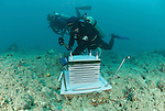 Julian Caley & Shawn Smith install an artificial reef in Lizard Island as part of CReefs 4 year project to check what life form will inhabit this structure.