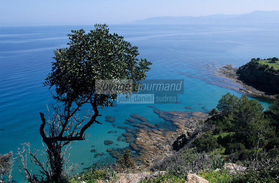 Europe/Chypre/Env de Polis : La côte près des bains d'Aphrodite