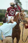 HOT SPRINGS, AR - APRIL 9: Jockey Joseph Rocco, Jr. aboard Taxable #1, being congratulated by assistant trainer Darren Fleming after coming in second in the Fantasy Stakes at Oaklawn Park on April 9, 2016 in Hot Springs, Arkansas. (Photo by Justin Manning/Elipse Sportwire/Getty Images)