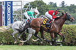 Leinster wins the gr3 Troy Stakes ridden by Tyler Gaffalione trained by George R. Arnold, II