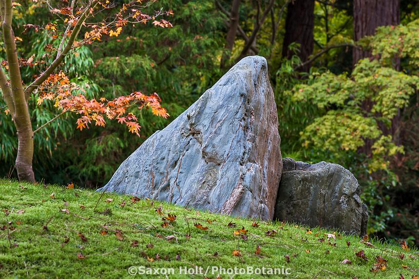 Japanese Tea Garden in Golden Gate Park, San Francisco, California