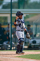 Detroit Tigers catcher Eliezer Alfonzo (53) during a Florida Instructional League game against the Pittsburgh Pirates on October 2, 2018 at the Pirate City in Bradenton, Florida.  (Mike Janes/Four Seam Images)