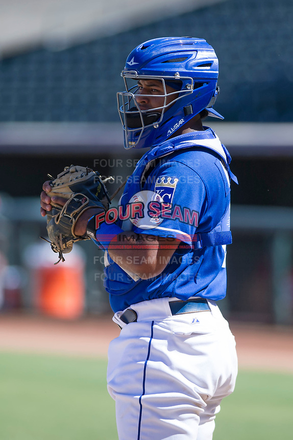 Kansas City Royals catcher Meibrys Viloria (19) on defense during an Instructional League game against the Cincinnati Reds on October 2, 2017 at Surprise Stadium in Surprise, Arizona. (Zachary Lucy/Four Seam Images)