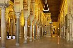 www.travel-lightart.com, ©Paul J. Trummer, Andalucia, Andalusia, Cordoba, Europe, Geography, Spain, Andalusien, Cordoba Stadt, Europa, Geografie, Spanien, Cordoba Ciudad, España, Geografia, Cordoba City, La Mesquita, La Mezquita, Mezquita mosque, Mezquita, Moschee,, la Mezquita de Córdoba, Örtlichkeiten, Sehenswuerdigkeit, Sehenswürdigkeit, Wahrzeichen, Landmark, landmarks, localities, symbols, emblema , emblemas, lugares, señal distintiva,, Cathedral, Kathedrale, Mezquita Moschee