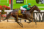 OCTOBER 6, 2018 : Wow Cat (CHI), ridden by Jose Ortiz, wins the Beldame Stakes on Champagne Stakes Day at Belmont Park on October 6, 2018 in Elmont, NY.  Sue Kawczynski/ESW/CSM