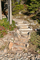 Hiking trail at Ship Harbor area, Acadia National Park, Maine, ME, USA
