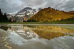 Mount Rainier National Park, Washington
