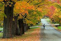 Angela Robinson taking a walk in Fairfield, VT.