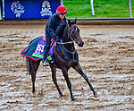October 27, 2015 :   Impassable (IRE), trained by Carlos Laffon-Parias and owned by Wertheimer et Frere, exercises in preparation for the Breeders' Cup Mile at Keeneland Race Track in Lexington, Kentucky on October 27, 2015. Scott Serio/ESW/CSM