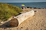 Hammonasset State Beach Park. Log on beach for sitting.