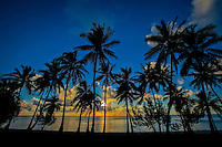 Palm trees silhouetted at sunset, Amuri Beach, Aitutaki Island, Cook Islands