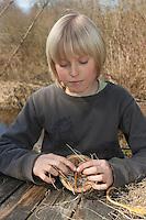 Kinder, Kind basteln Ohrwurmtopf, Tontopf wurde mit trockenem Heu befüllt, eingeklemmte Stöckchen verhindern das Rausfallen des Materials, Blumentopf als Schlafplatz für Ohrwürmer, Schlafröhre für Ohrwurm, Ohrwürmer, Ohrenkneifer, zur biologischen Bekämpfung von Blattläusen, Forficula, Forficulidae, earwig, earwigs
