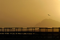 Wooden Bridge and Ocean at sunset - Hermanus, South Western Cape, South Africa