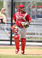April 1, 2010:  Catcher Ryan Gugel of the Philadelphia Phillies organization during Spring Training at the Carpenter Complex in Clearwater, FL.  Photo By Mike Janes/Four Seam Images