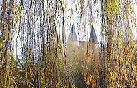 The Kaiser Dom in Koenigslutter through a willow tree. Autumn colors in Germany