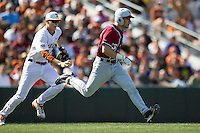 Texas Longhorns third baseman Erich Weiss #6 reaches to tag out Oklahoma Sooners base runner Kolbey Carpenter #23 during a rundown in the NCAA baseball game on April 6, 2013 at UFCU DischFalk Field in Austin, Texas. The Longhorns defeated the rival Sooners 1-0. (Andrew Woolley/Four Seam Images).