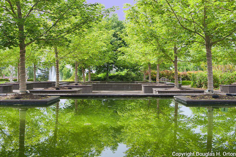 Bosque Plaza, Reflection Ponds, Oregon Gardens, Silverton, Oregon Oregon Gardens, Silverton, Oregon, USA, an 80 acre botanical garden in the Willamette Valley.  Windy day.  HDR image. This image available for license through exclusive agency.  Please contact the photographer