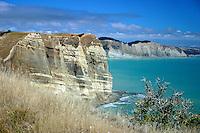 Cape Kidnappers Coastline, New Zealand