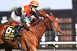 July 11, 2015:  Ceisteach, Channing Hill up, wins the Grade III Robert G. Dick Memorial Stakes, one and 3/8 miles on the turf for fillies and mares 3 and upward at Delaware Park in Stanton DE. Trainer is tom Proctor; owneer is Augustin Stable. Joan Fairman Kanes/ESW/CSM