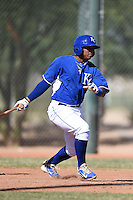 Kansas City Royals catcher Melbrys Viloria (14) during an Instructional League game against the Cincinnati Reds on October 16, 2014 at Goodyear Training Facility in Goodyear, Arizona.  (Mike Janes/Four Seam Images)