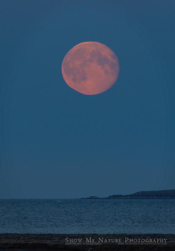 Moonrise over Shelikof Strait, taken from Hallo Bay Bear Camp, Alaska